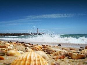 Algarve: FARO