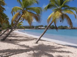 Guadeloupe a Martinik