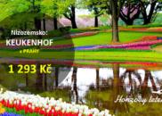 Nizozemsko: KEUKENHOF