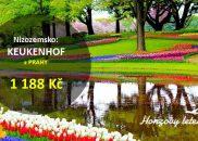 Za tulipány do Keukenhofu