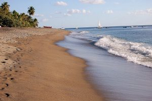 FR – Martinik – koronavirus